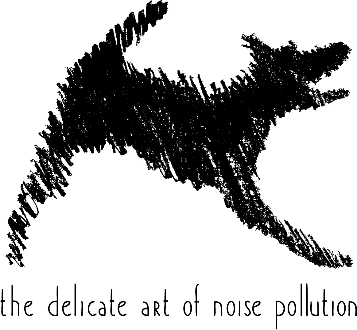 the delicate art of noise pollution books logo